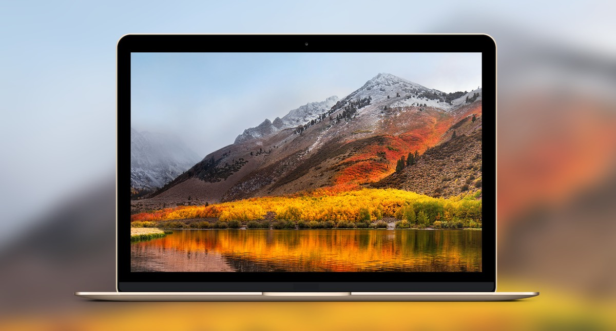 how to find out your mac model
