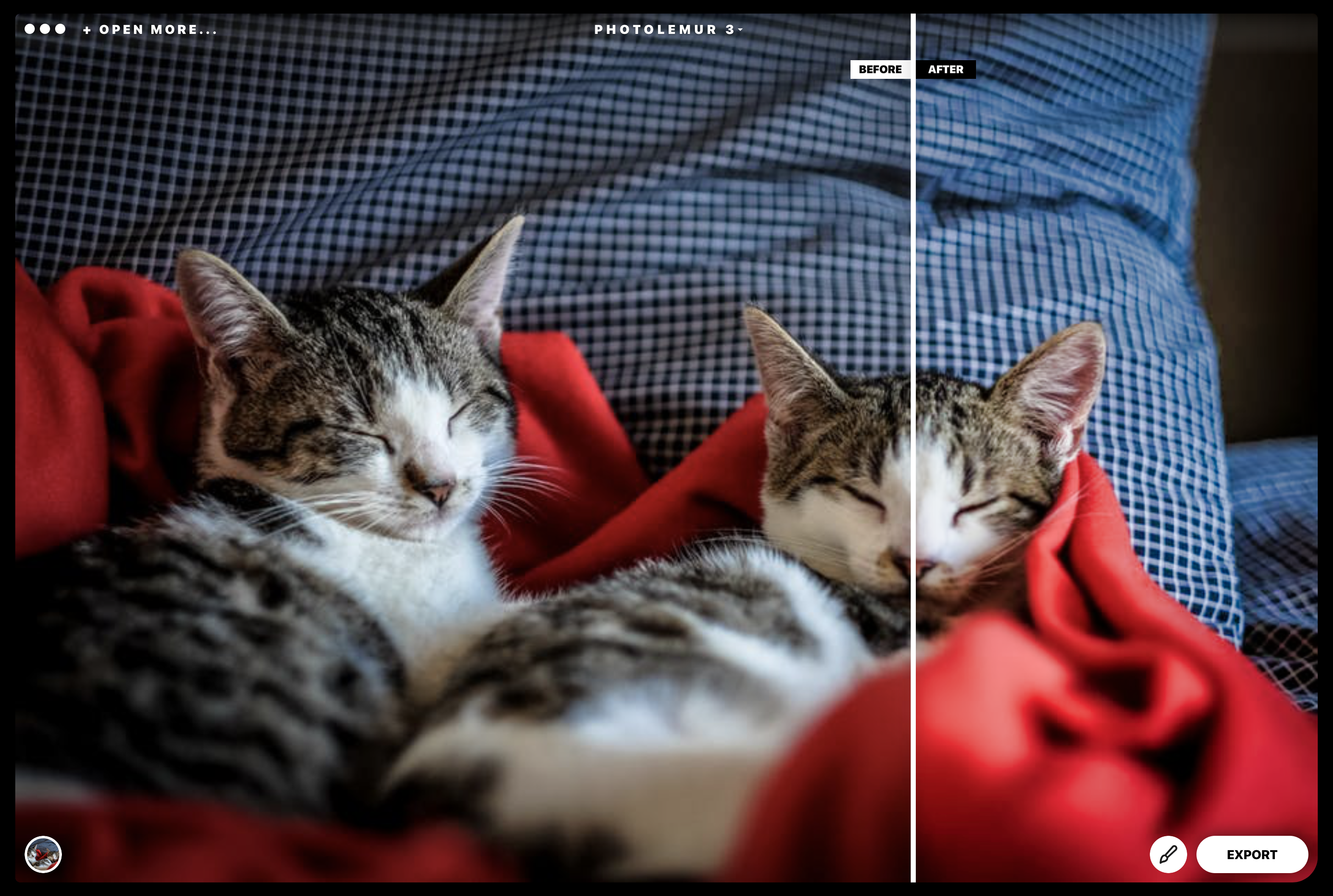 Enhancing your images with photolemur